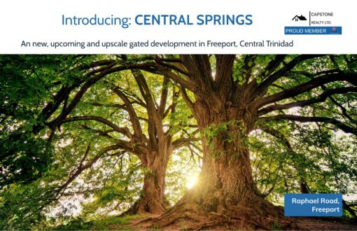 Central Springs Cover Page