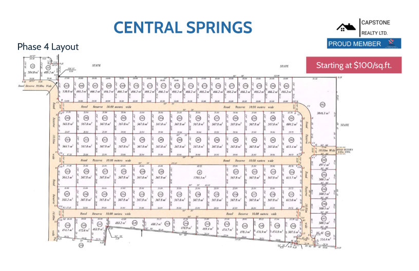 Central Springs Phase 4 Layout